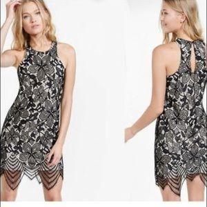Express Floral Lace Contrast Sheath Dress